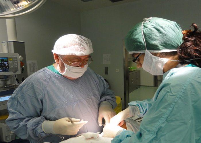prof. dr. anghel3