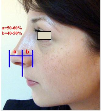 Figura 28. Relaţia cu poziţia buzei superioare